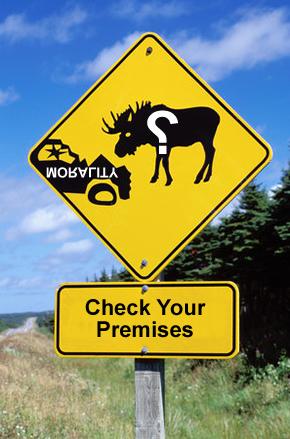 2009-11-05.moose